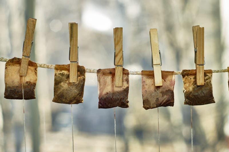 Χρησιμοποιημένες τσάντες τσαγιού που κρεμούν στη σκοινί για άπλωμα στοκ φωτογραφίες