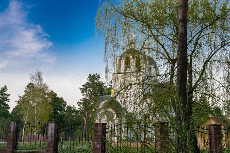 Χριστιανική εκκλησία ενάντια στους κλάδους μπλε ουρανού και ιτιών στοκ εικόνα