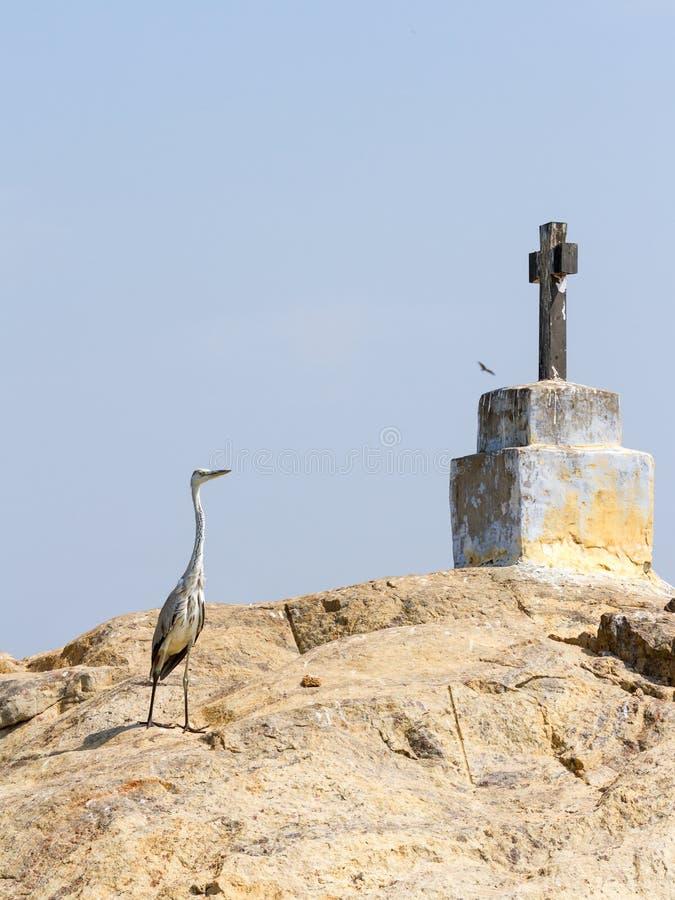 Χριστιανικοί σταυρός και ερωδιός στο νησί βράχου στα τέλματα του Κεράλα στοκ εικόνες με δικαίωμα ελεύθερης χρήσης
