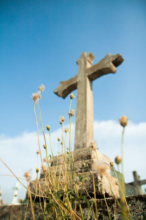 Χριστιανικοί σταυρός και λουλούδι στοκ φωτογραφία με δικαίωμα ελεύθερης χρήσης