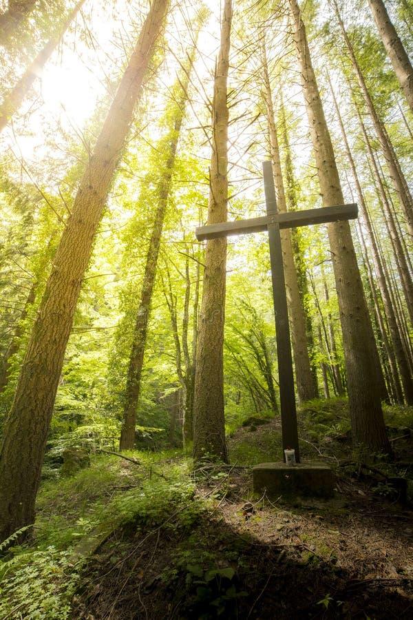 Χριστιανικός σταυρός στα ξύλα στοκ εικόνα με δικαίωμα ελεύθερης χρήσης