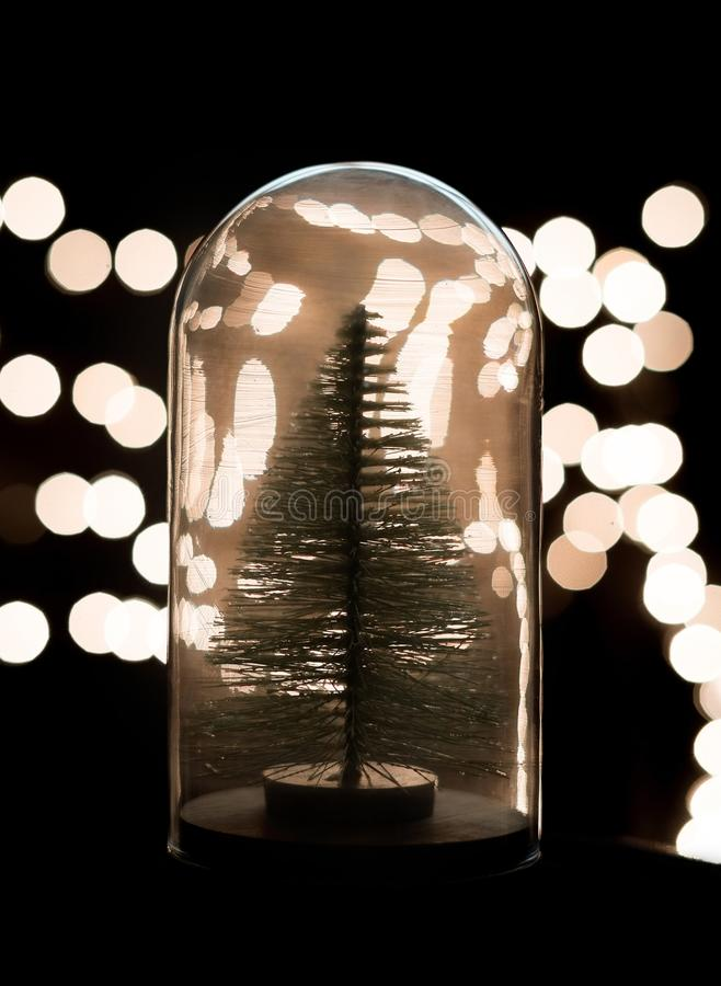 Χριστουγεννιάτικο δέντρο μέσα σε μια διακόσμηση σφαιρών γυαλιού στοκ φωτογραφίες