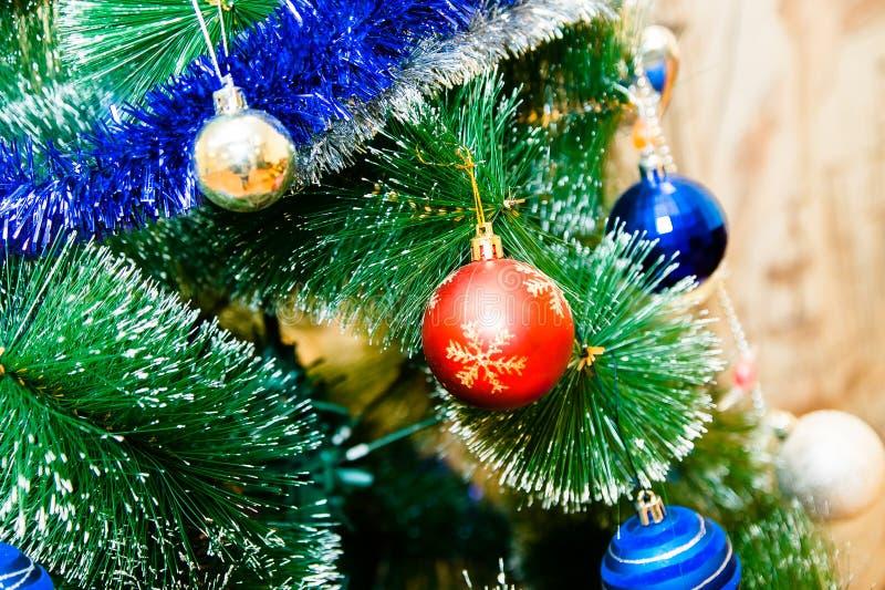Χριστουγεννιάτικο δέντρο με τις μπλε, κόκκινες και χρυσές σφαίρες στοκ φωτογραφία με δικαίωμα ελεύθερης χρήσης
