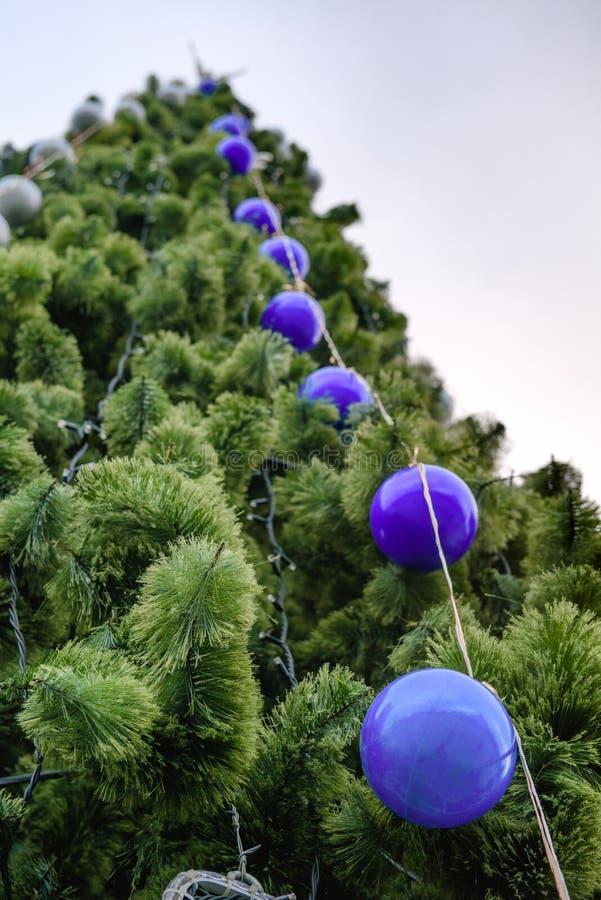 Χριστουγεννιάτικο δέντρο με τις σφαίρες στοκ εικόνα με δικαίωμα ελεύθερης χρήσης