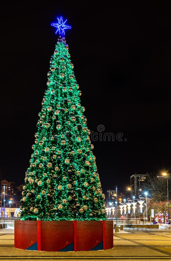 Χριστουγεννιάτικο δέντρο τη νύχτα στοκ εικόνες με δικαίωμα ελεύθερης χρήσης