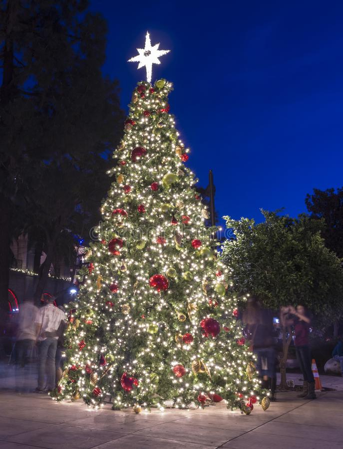 Χριστουγεννιάτικο δέντρο LIT σούρουπου στοκ φωτογραφία με δικαίωμα ελεύθερης χρήσης