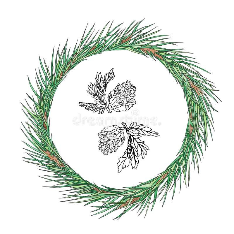 Χριστουγεννιάτικο στεφάνι με κώνο σε κλαδί Εμφάνιση κάρτας για το νέο έτος Σχεδίαση αργιών στοκ φωτογραφίες