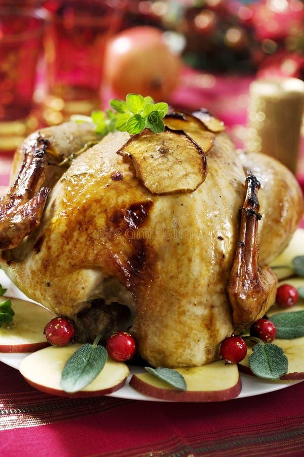 Χριστούγεννα Τουρκία στοκ φωτογραφίες