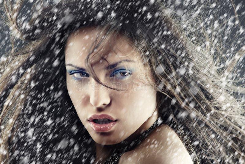 Χριστούγεννα χιονιού στοκ εικόνες με δικαίωμα ελεύθερης χρήσης