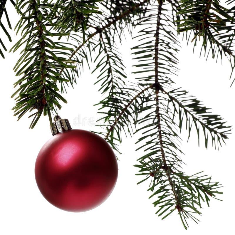 Download Χριστούγεννα στοκ εικόνες. εικόνα από διακοπές, δέντρο - 397012