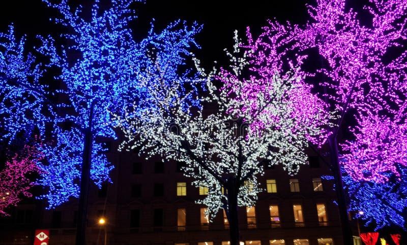 Χριστούγεννα catalunya Placa στοκ εικόνες