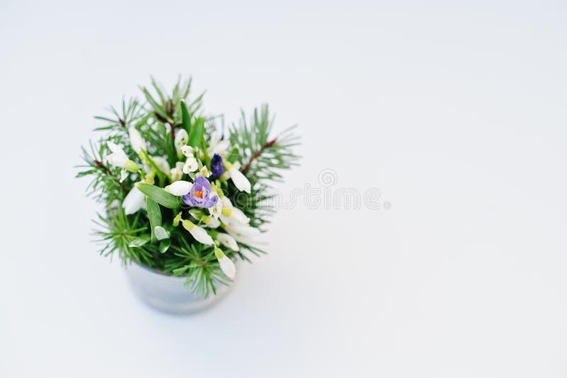 Χρονική έννοια άνοιξη Snowdrops σε ένα γυαλί που απομονώνεται στο λευκό Fre στοκ φωτογραφίες