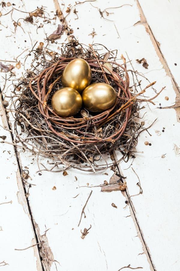 Χρυσά αυγά στη φωλιά στοκ εικόνες