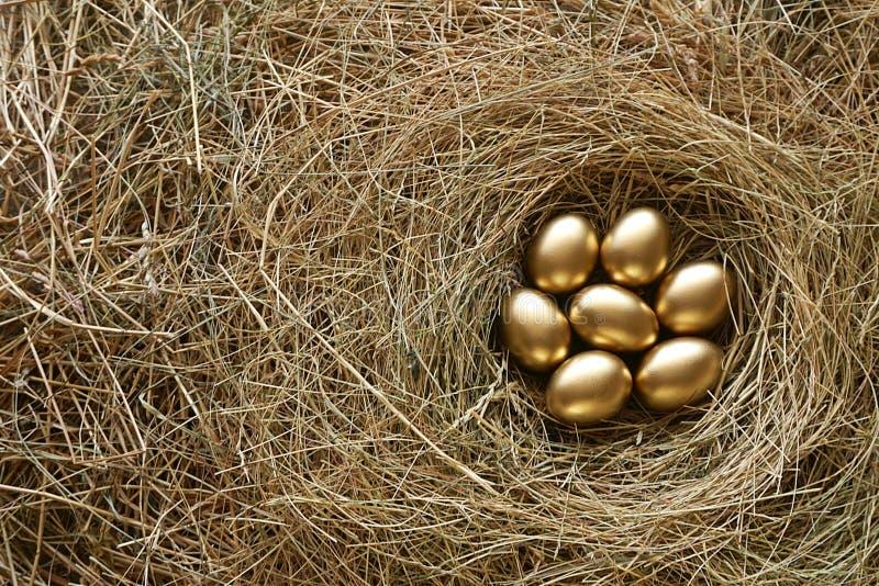 Χρυσά αυγά στο υπόβαθρο αχύρου φωλιών στοκ εικόνες