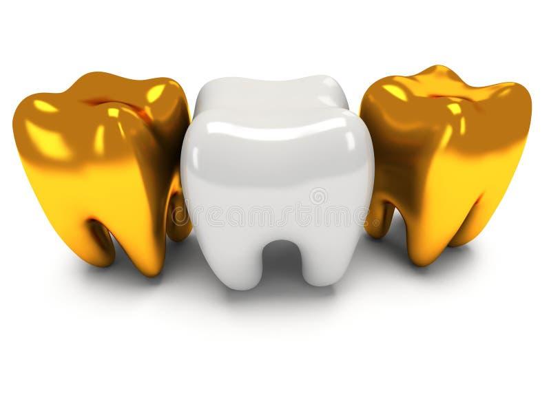 Χρυσά και υγιή δόντια διανυσματική απεικόνιση