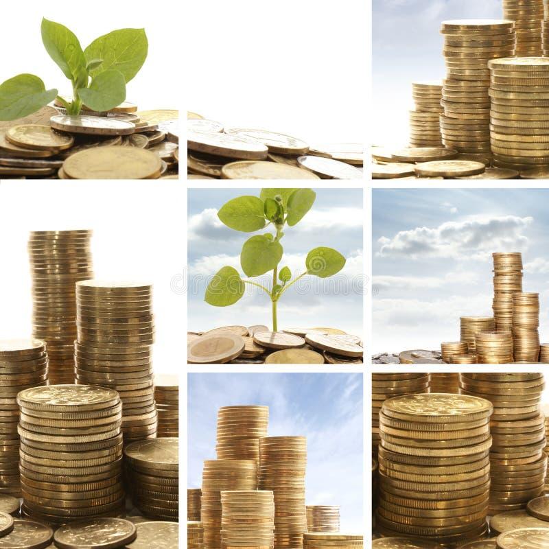 χρυσά πράσινα φύλλα κολάζ ν& στοκ εικόνα με δικαίωμα ελεύθερης χρήσης