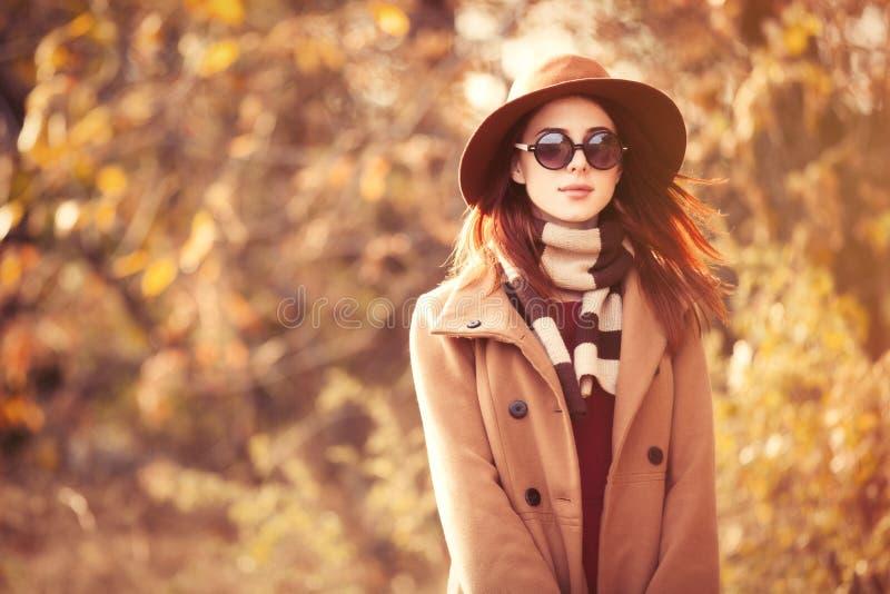 χρυσά φύλλα κοριτσιών brunette στοκ φωτογραφία με δικαίωμα ελεύθερης χρήσης