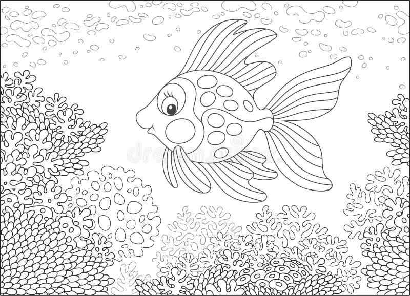 Χρυσά ψάρια σε έναν σκόπελο απεικόνιση αποθεμάτων