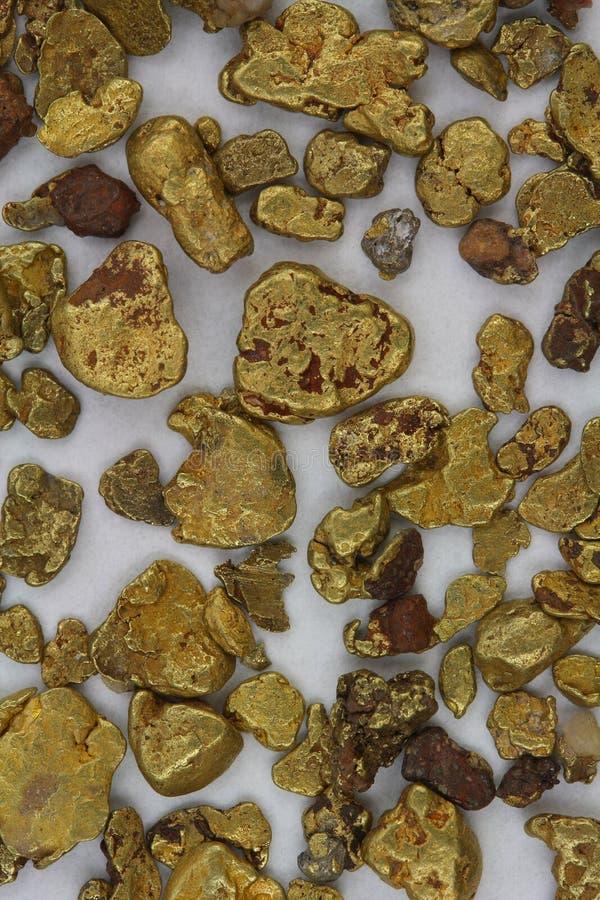 Χρυσά ψήγματα μεταλλοφόρων κοιτασμάτων Καλιφόρνιας στοκ φωτογραφίες
