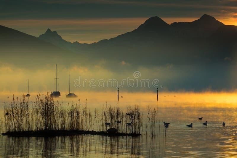 χρυσές λίμνες στοκ φωτογραφία με δικαίωμα ελεύθερης χρήσης