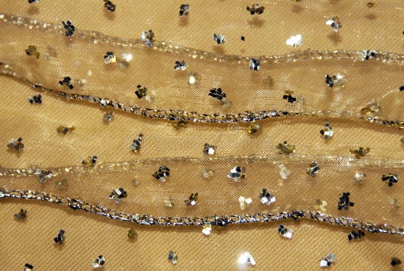 χρυσή αλιεία με δίχτυα υφ στοκ φωτογραφίες