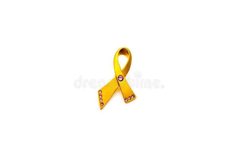 Χρυσή και ρόδινη καρφίτσα συνειδητοποίησης καρκίνου του μαστού που απομονώνεται στο άσπρο υπόβαθρο  έννοια υγειονομικής περίθαλψη στοκ φωτογραφία με δικαίωμα ελεύθερης χρήσης