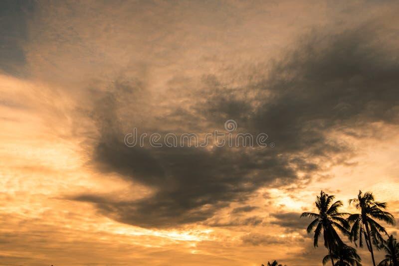 Χρυσή μορφή Φοίνικας ηλιοβασιλέματος ουρανού σύννεφων στοκ εικόνες