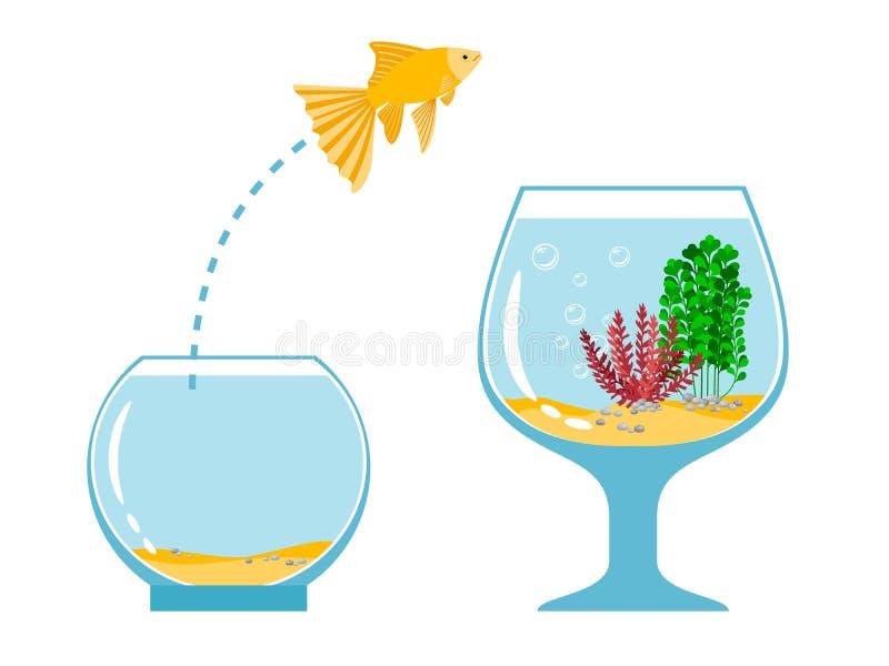 Χρυσή πηδώντας διαφυγή ψαριών από το fishbowl σε άλλη απλή διανυσματική απεικόνιση ενυδρείων ελεύθερη απεικόνιση δικαιώματος