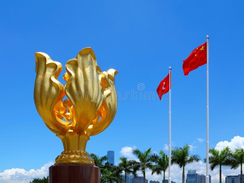 Χρυσή πλατεία Bauhinia στοκ εικόνες