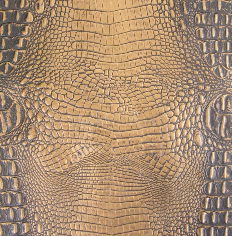 Χρυσή/σκοτεινή καφετιά αποτυπωμένη σε ανάγλυφο σύσταση δέρματος κοιλιών Gator στοκ εικόνες