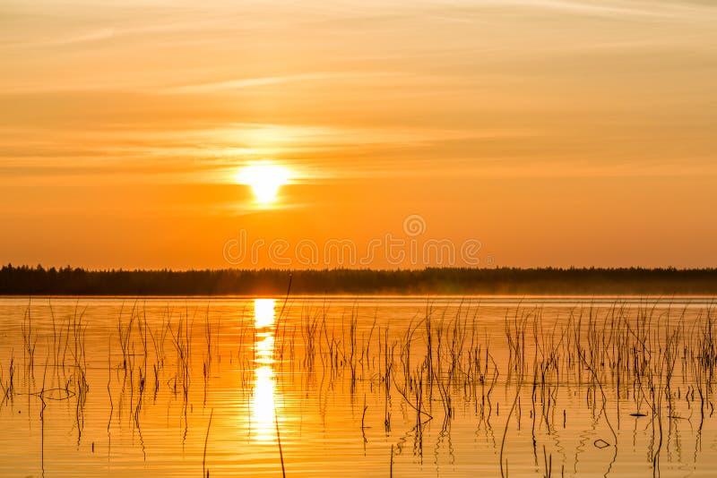Χρυσή ώρα στη λίμνη στοκ εικόνα με δικαίωμα ελεύθερης χρήσης