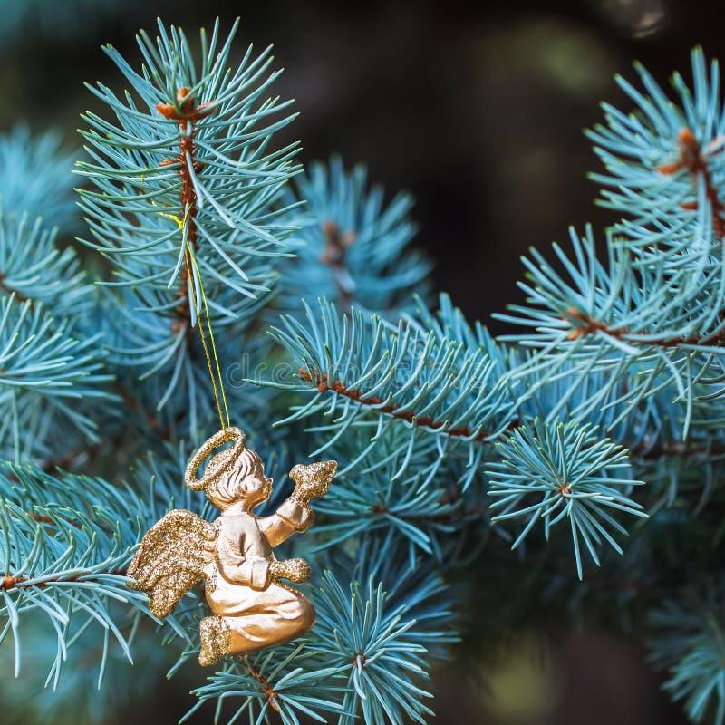 Χρυσός άγγελος με ένα πουλί στις μπλε ερυθρελάτες τοποθετήστε το κείμενο Σχέδιο Χριστουγέννων στοιχείων στοκ εικόνες