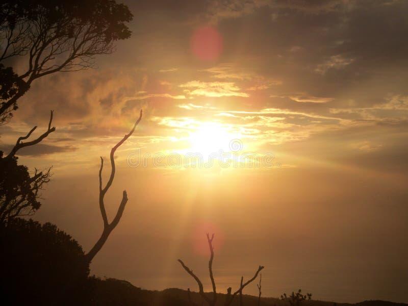 Χρυσός ήλιος στοκ εικόνες
