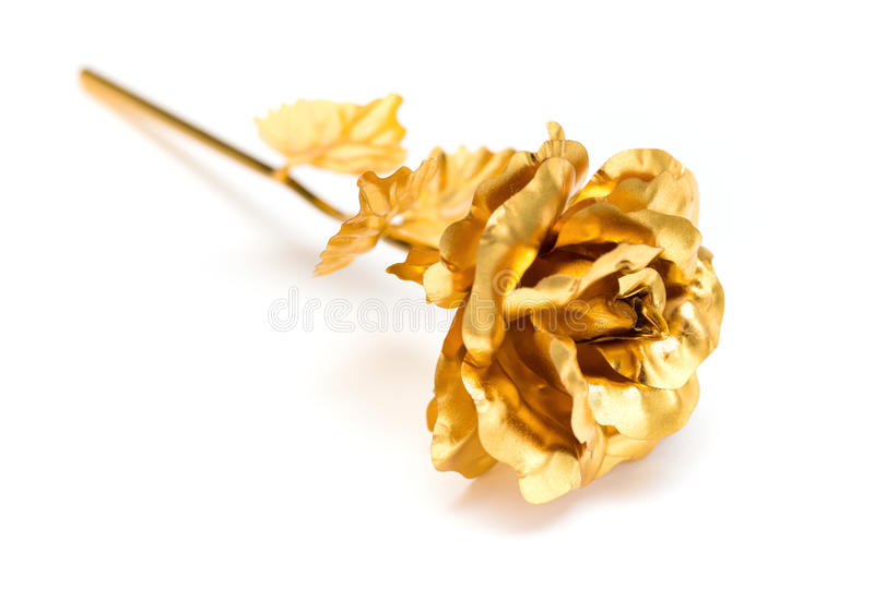 Χρυσός αυξήθηκε ως prensent στενός επάνω στο λευκό στοκ εικόνες