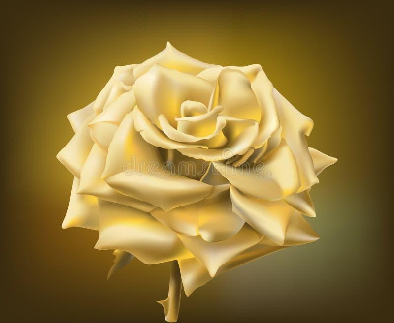 χρυσός αυξήθηκε διανυσματική απεικόνιση