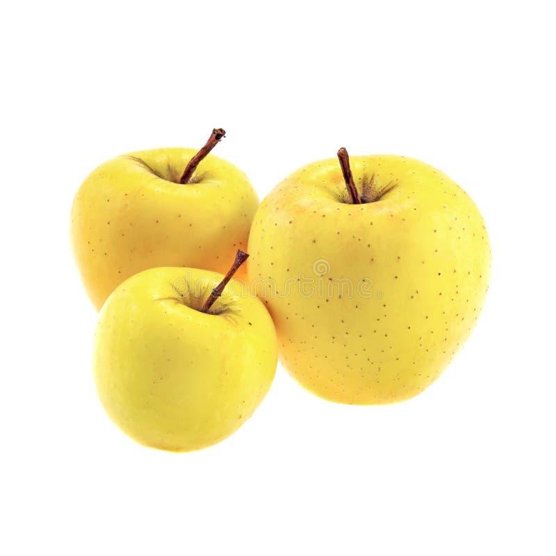 Χρυσός - εύγευστα μήλα που απομονώνονται στο άσπρο υπόβαθρο στοκ εικόνες