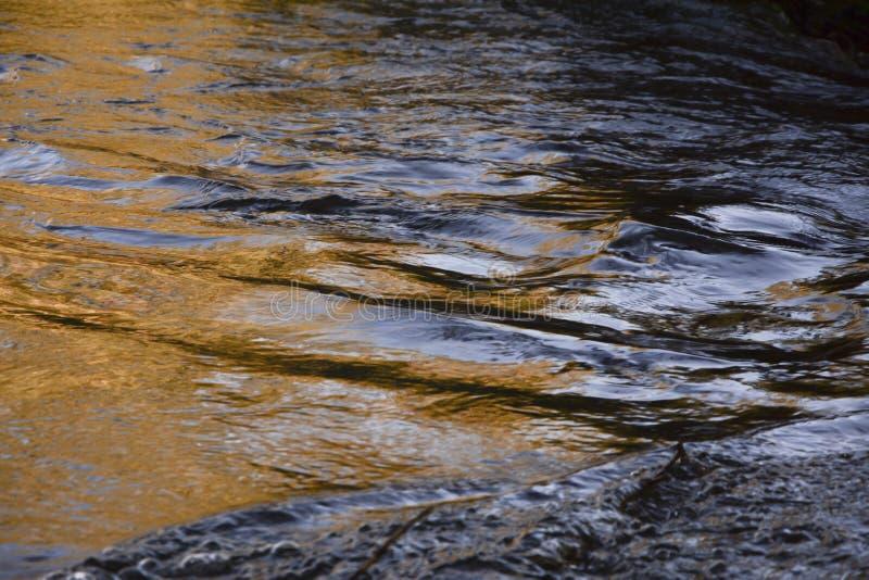 Χρυσός ποταμός φθινοπώρου ` s στοκ φωτογραφία με δικαίωμα ελεύθερης χρήσης