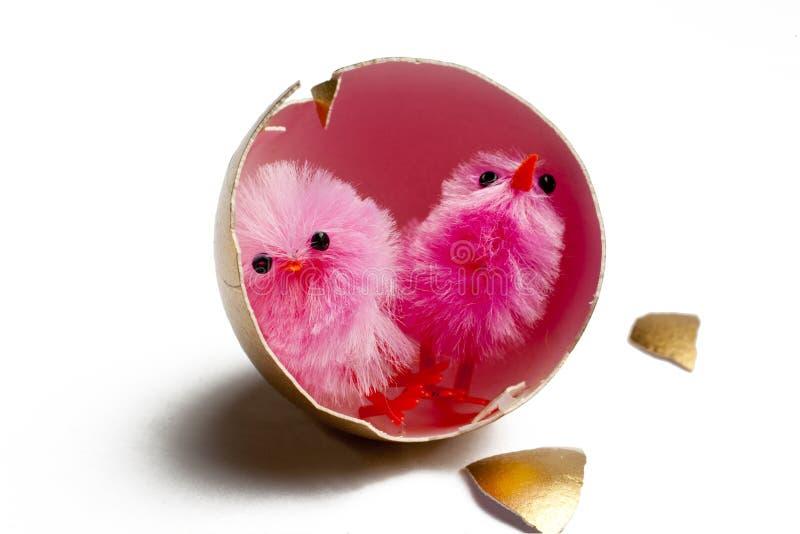 Χρυσό αυγό με τους νεοσσούς στοκ φωτογραφία