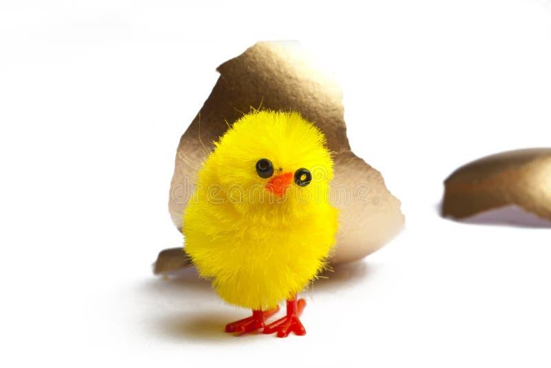 Χρυσό αυγό με τους νεοσσούς στοκ φωτογραφία με δικαίωμα ελεύθερης χρήσης