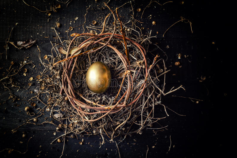 Χρυσό αυγό στη φωλιά στοκ φωτογραφία με δικαίωμα ελεύθερης χρήσης
