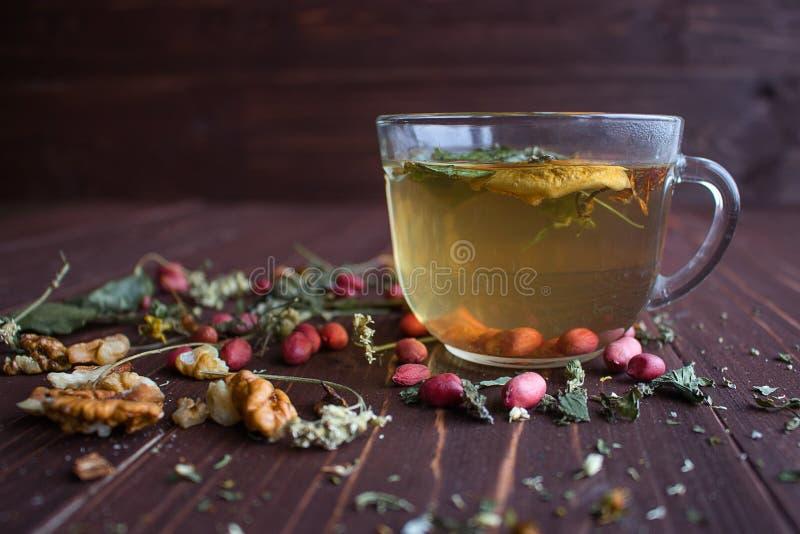 Χρυσό βοτανικό τσάι στοκ εικόνες