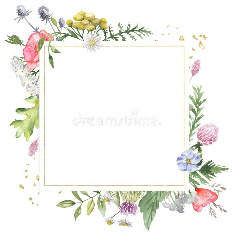 Χρυσό γεωμετρικό πλαίσιο με τα wildflowers watercolor Πρότυπο για το κείμενο υπό μορφή τετραγώνου, καρδιά, κύκλος, ρόμβος απεικόνιση αποθεμάτων