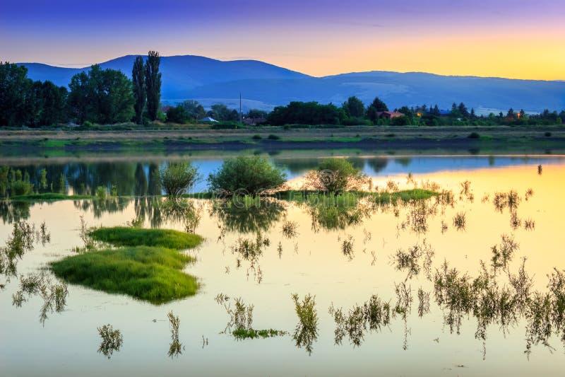 Χρυσό ηλιοβασίλεμα ώρας πέρα από την ήρεμη, αντανακλαστική λίμνη με τις πράσινες εγκαταστάσεις στοκ εικόνα με δικαίωμα ελεύθερης χρήσης