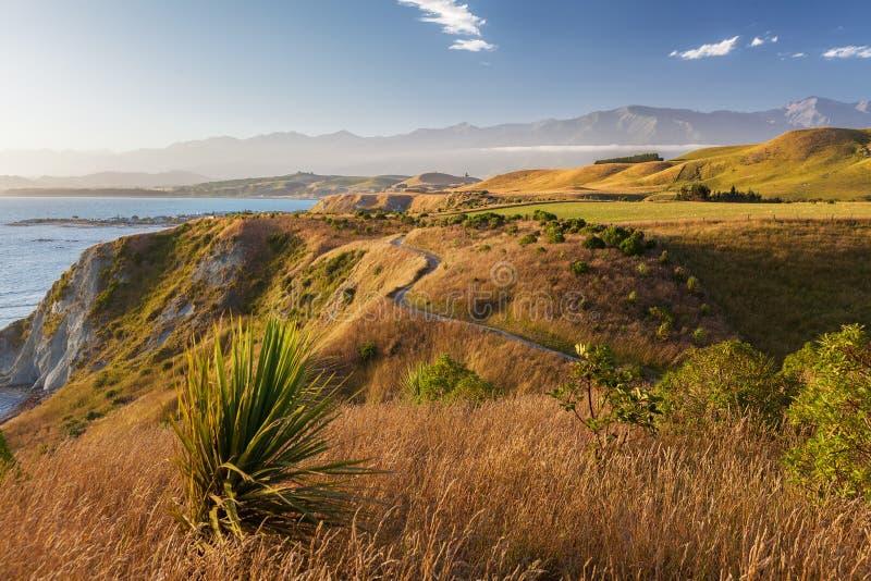 Χρυσό ηλιοβασίλεμα πέρα από τη διάβαση πεζών χερσονήσων Kaikoura, Νέα Ζηλανδία στοκ φωτογραφίες με δικαίωμα ελεύθερης χρήσης