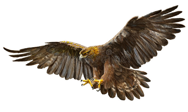 Χρυσό διάνυσμα προσγείωσης αετών απεικόνιση αποθεμάτων