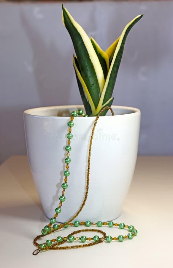 Χρυσό και πράσινο περιδέραιο στοκ εικόνες