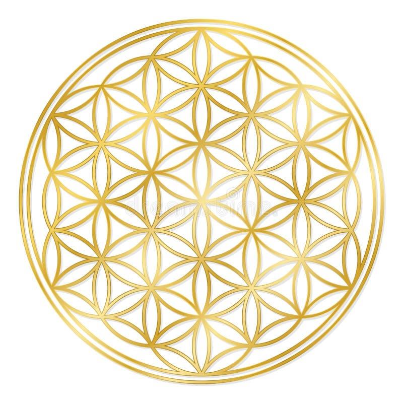 Χρυσό λουλούδι της ζωής διανυσματική απεικόνιση