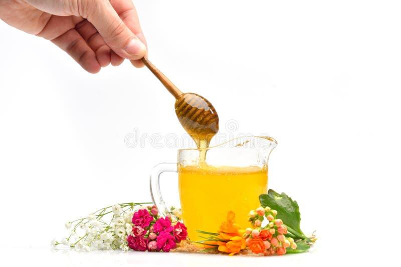 Χρυσό μέλι στο γυαλί στοκ φωτογραφία με δικαίωμα ελεύθερης χρήσης