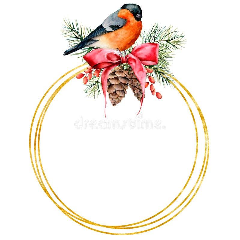 Χρυσό στεφάνι Χριστουγέννων Watercolor με το σχέδιο bullfinch και χειμώνα Χρωματισμένο χέρι πουλί με τους κώνους πεύκων, κόκκινο  ελεύθερη απεικόνιση δικαιώματος