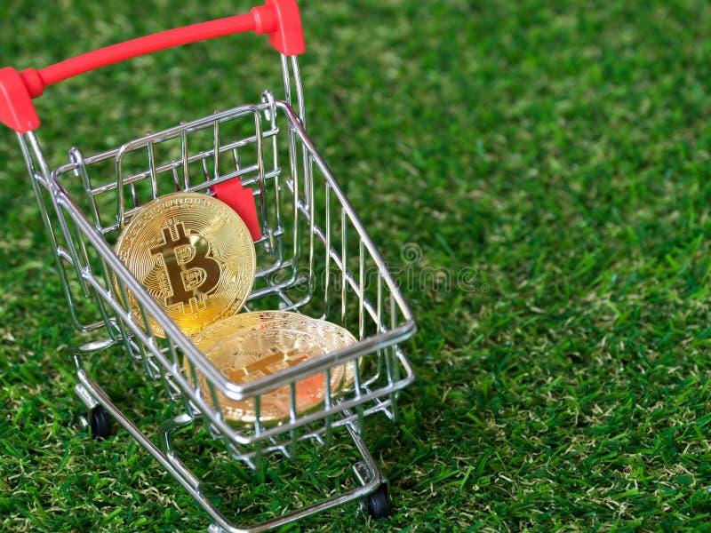 Χρυσό bitcoin Cryptocurrency στο κόκκινο κάρρο αγορών στο πράσινο υπόβαθρο χλόης Ψηφιακή έννοια cryptocurrency χρημάτων στοκ φωτογραφία